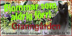 granngarden-hoger-150515