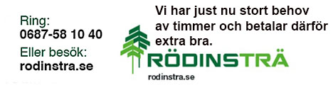 rodins1