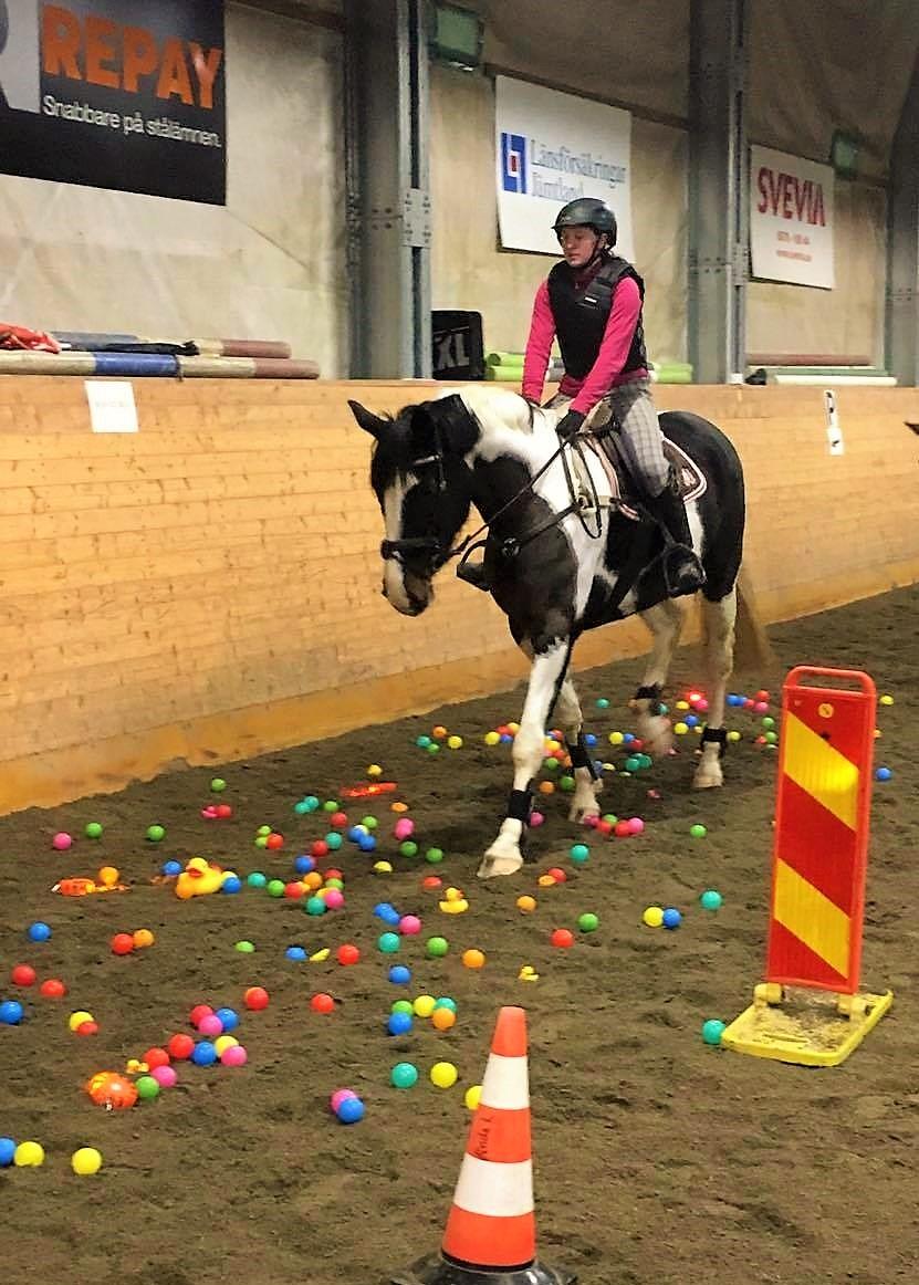 På bilden: Denise Bjärelid och hästen Santana går genom bollhavet. Foto: Helena Svanberg