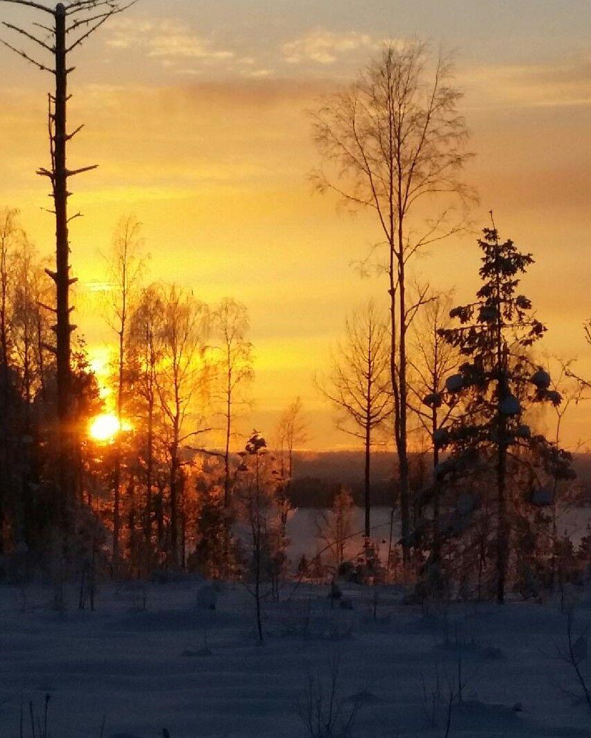 tn_vintermotivet
